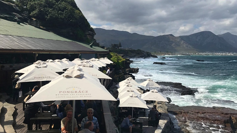 Zuid-Afrika: 5 hotspots aan de West-Kaap